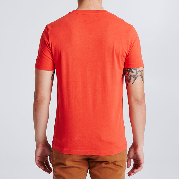 Tee shirt imprimé spicy and tasty