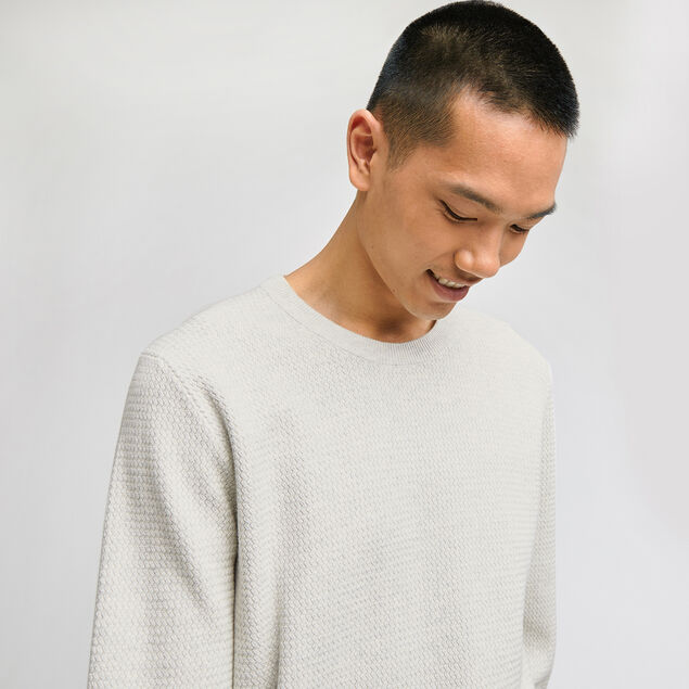 Pull col rond coton point fantaisie