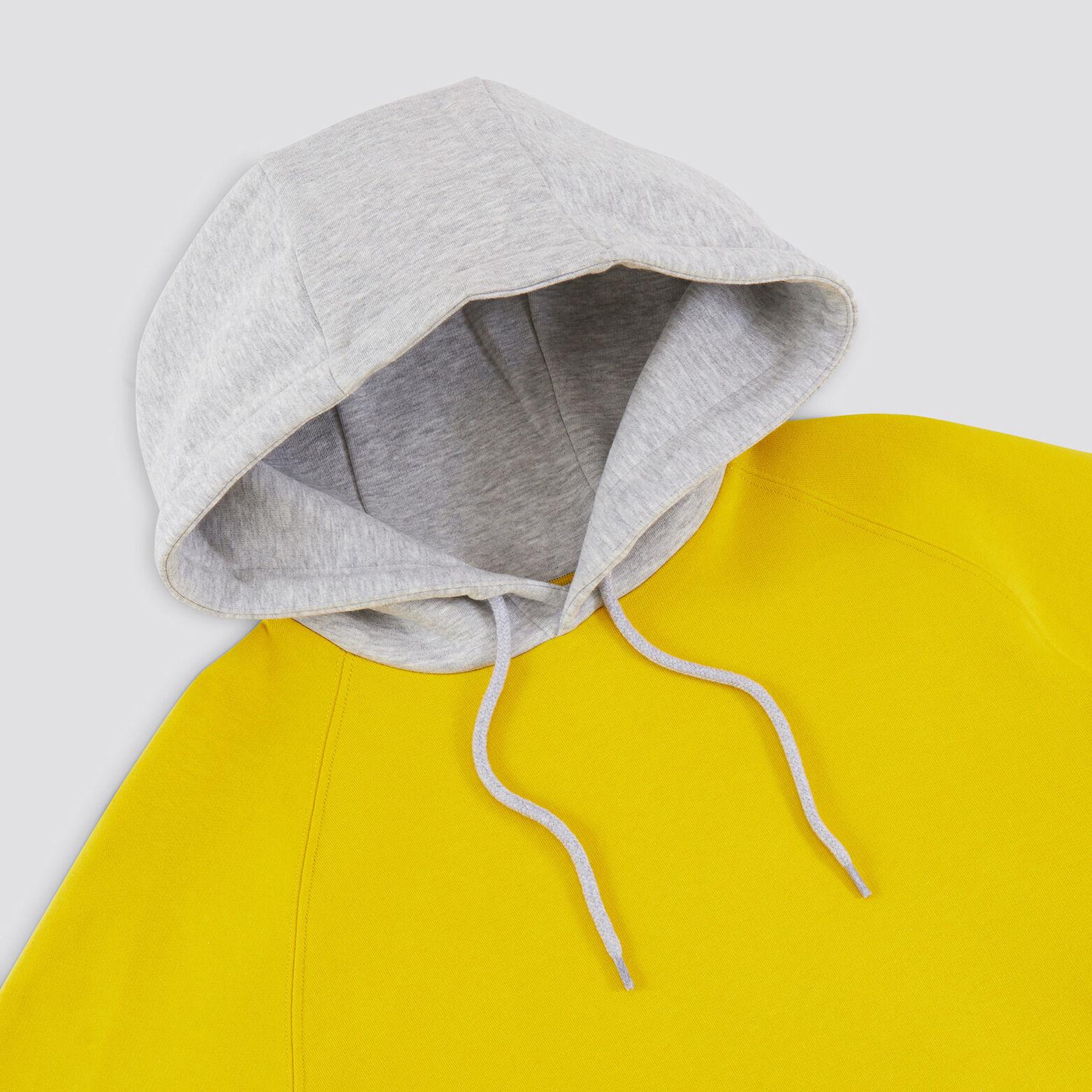 Sweat à capuche bicolor imprimé dos