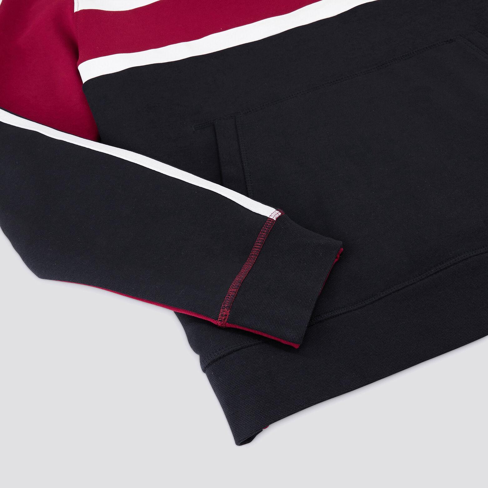 Sweat à capuche tricolore